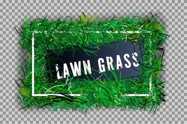 Frontera de hierba verde