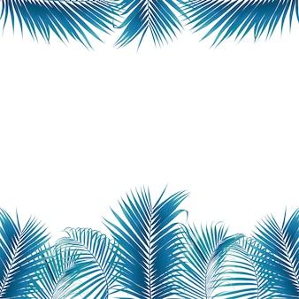 Frontera de hojas de palma verde sobre fondo blanco aislado.