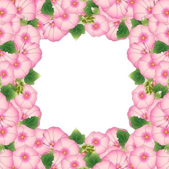 Frontera rosa alcea rosea
