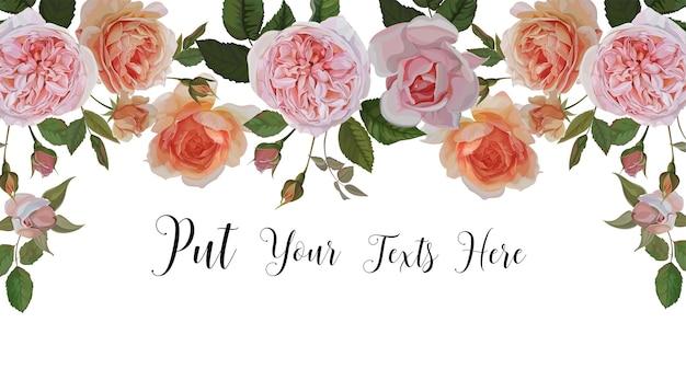 Frontera de rosas sobre fondo blanco