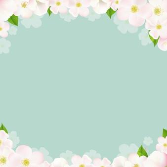 Fronteras de primavera con flores de manzana