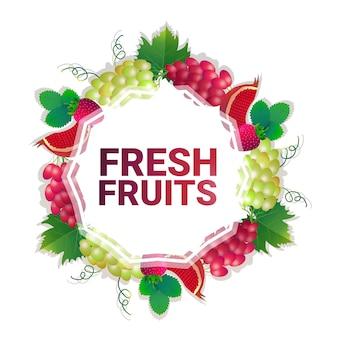 Fruta colorido círculo copia espacio orgánico sobre fondo blanco, estilo de vida saludable o concepto de dieta