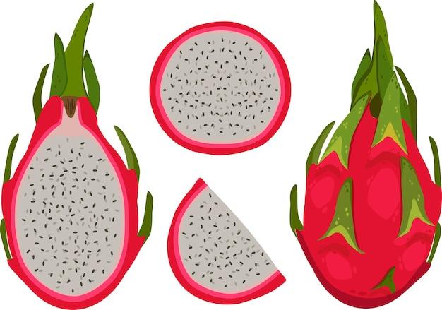 Fruta del dragón rojo, fruta entera, rebanada y mitad. icono de dibujos animados de ilustración vectorial aislado en blanco.
