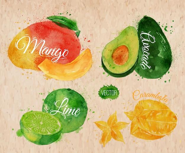 Fruta exótica acuarela mango, aguacate kraft.