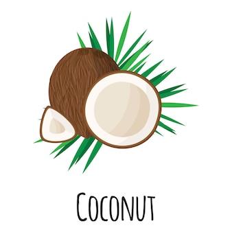 Fruta de súper alimento de coco para el diseño, la etiqueta y el embalaje del mercado de agricultores de plantilla. alimentos orgánicos de proteínas energéticas naturales.