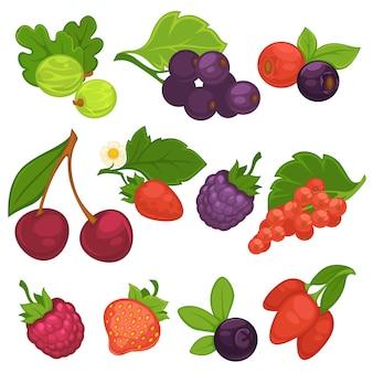 Frutas de baya vector iconos planos aislados para mermelada o jugo