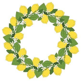 Frutas cítricas tropicales de limón con marco redondo de flores.