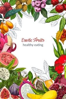 Frutas exóticas a todo color, marco decorativo. dibujado a mano ilustración vectorial.