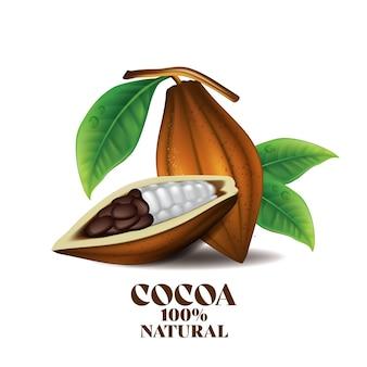 Frutas frescas de cacao con hoja verde