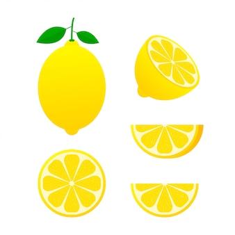Frutas frescas de limón, colección de ilustraciones vectoriales