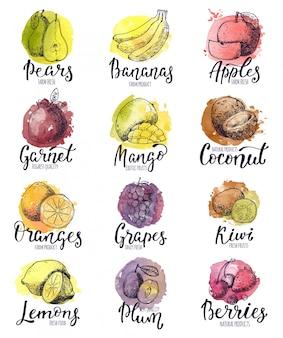 Frutas frutales manzana plátano y mango exótico con rodajas frescas y acuarela logo de frutas tropicales con letras signo ilustración fructífera conjunto aislado sobre fondo blanco.
