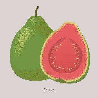 Frutas tropicales de verano guayaba, fruta entera y media.
