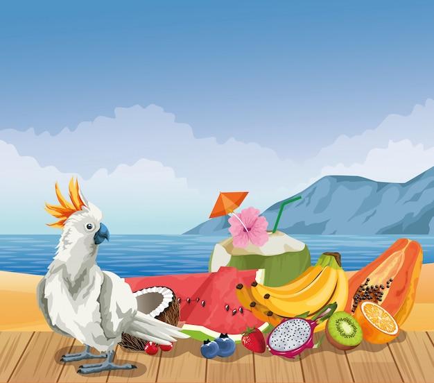 Frutas de verano y playa en estilo de dibujos animados