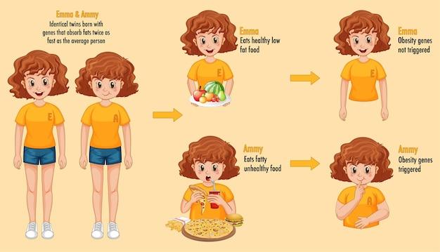 Funciones de los genes y el medio ambiente. infografía de grasa corporal en gemelos idénticos.