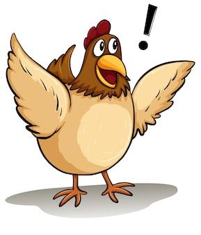 Una gallina gorda