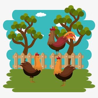 Gallos en la escena de la granja
