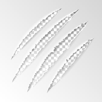Garras de arañazos realistas de animal con fondo transparente