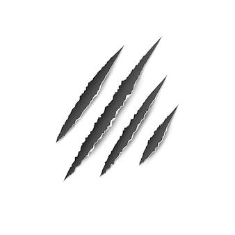 Garras pata arañazos aislados ilustración