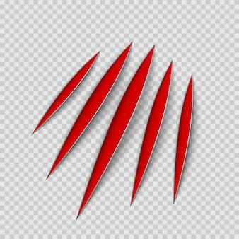 Garras rojas rasguño animal raspar la pista. gato o tigre arañazos en forma de pata. rastro de cuatro uñas. ilustración sobre fondo transparente