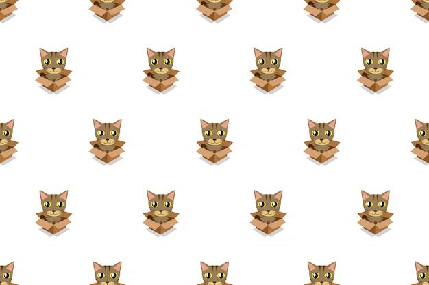 Gato atigrado en caja de cartón de patrones sin fisuras