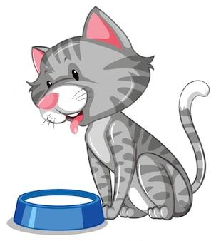 Un gato bebiendo leche