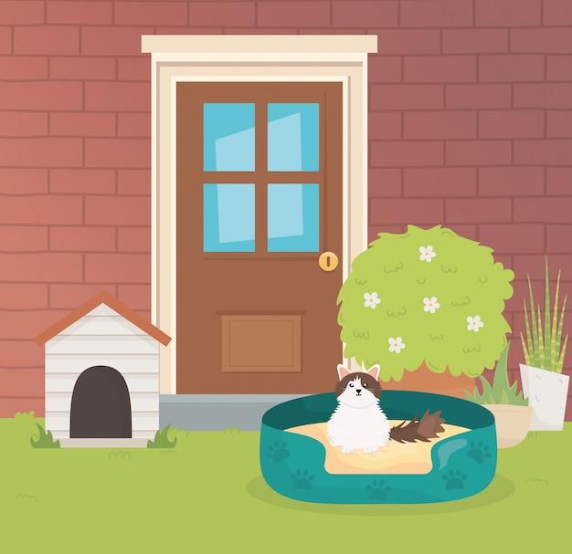 Gato con cama fuera de casa cuidado de mascotas