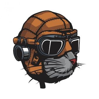 Gato con casco de cuero clásico.