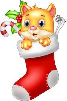 Gato de dibujos animados lindo en el calcetín de santa claus