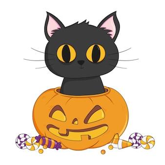 Gato de halloween dibujado a mano