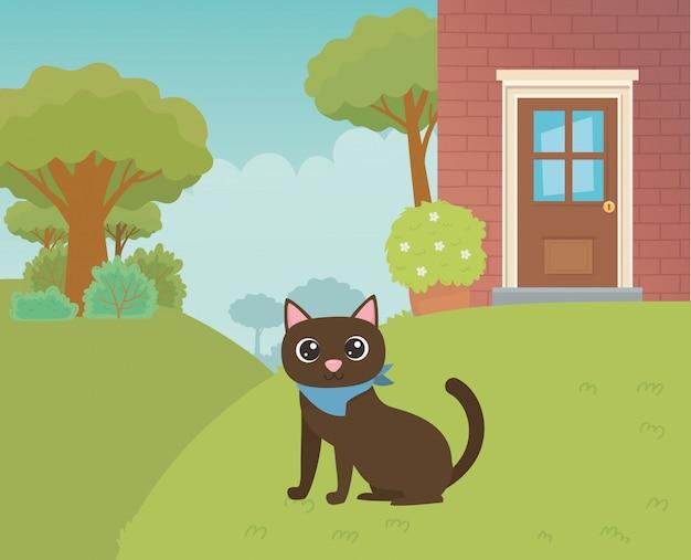 Gato ilustrador de vectores de diseño de dibujos animados
