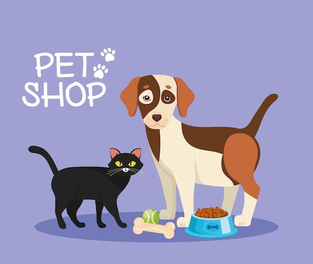 Gato y perro con comida y juguetes.