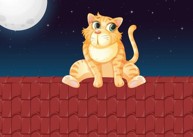Un gato en el techo