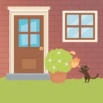 Gatos dibujos animados diseño vector ilustrador