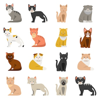 Gatos graciosos en estilo plano. aislar