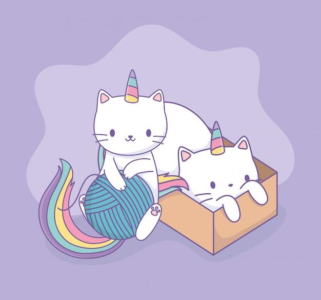 Gatos lindos con cola de arcoiris y personajes kawaii de caja de cartón