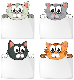 Gatos lindos con papeles en blanco