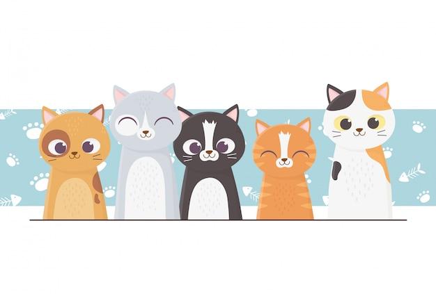 Gatos mascotas diferentes con patas de fondo ilustración de dibujos animados