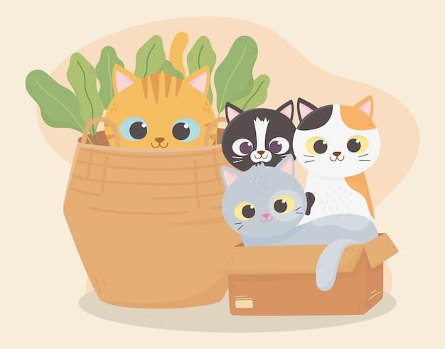 Los gatos me hacen feliz, los gatos en caja de cartón y el gatito en la caricatura
