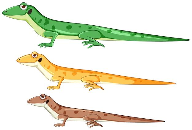 Geckos o lagartos en estilo de dibujos animados de diferentes colores aislados