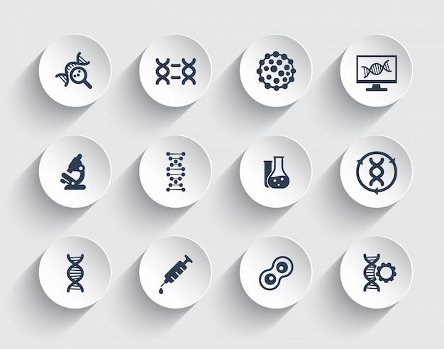 Genética, cadenas de adn, modificación genética e íconos de investigación