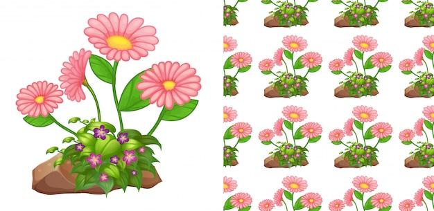 Gerbera rosa flores de patrones sin fisuras