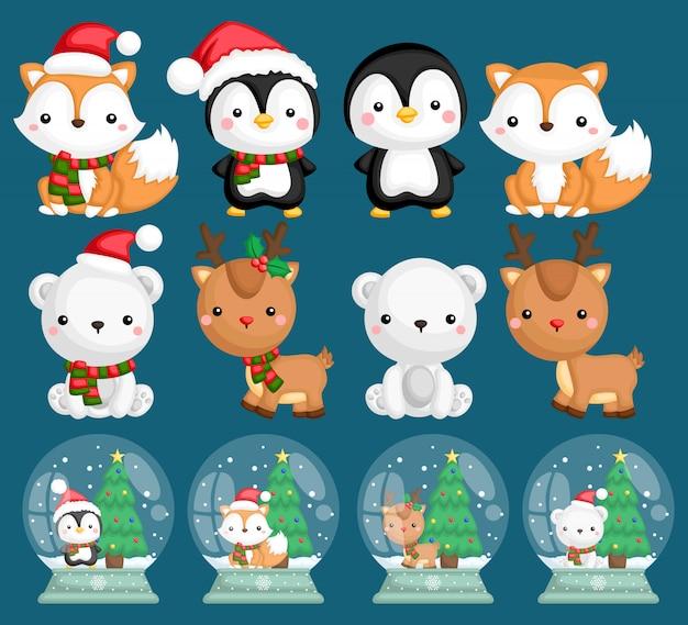 Globos de nieve de animales