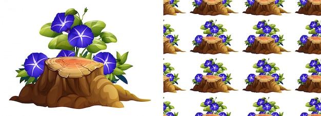 Gloria de la mañana flores