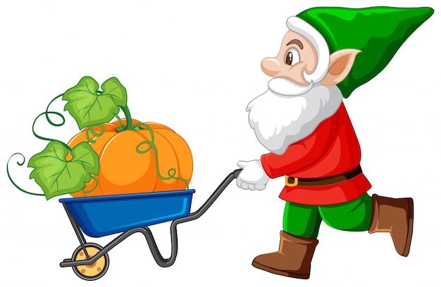 Gnome push haul cart y calabaza personaje de dibujos animados sobre fondo blanco.