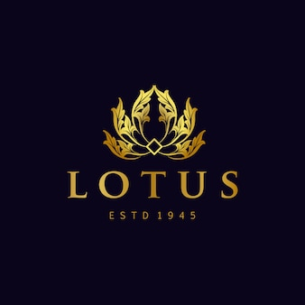 Golden lotus logo flores vector