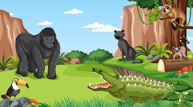 Gorila con otros animales salvajes en el bosque o la escena de la selva tropical.