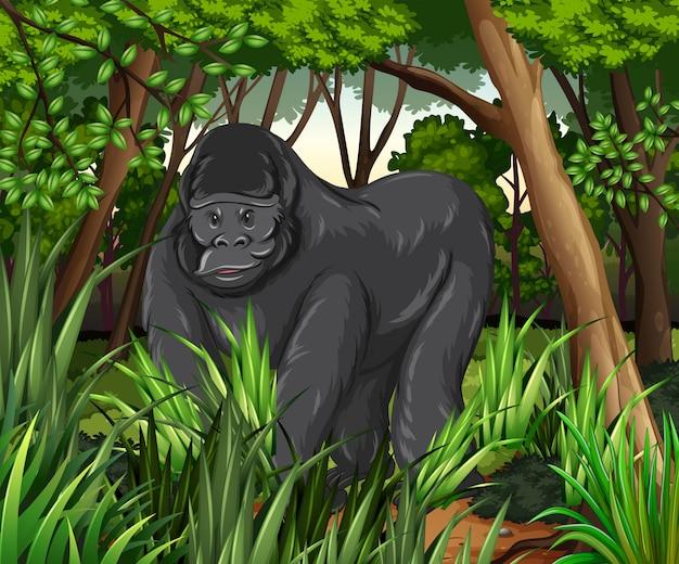 Gorila viviendo en la selva