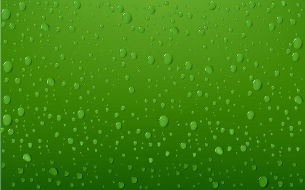 Fondos De Color Verde Agua: Fotos Y Vectores Gratis
