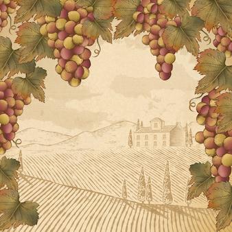 Grabado de uva y hojas, escena de bodega vintage para usos
