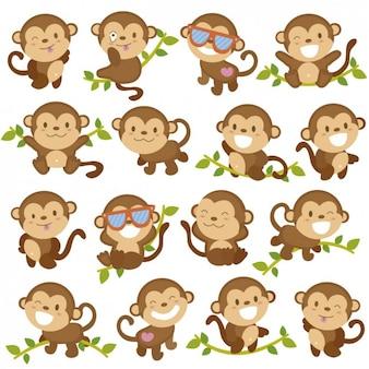 Graciosos dibujos de monos